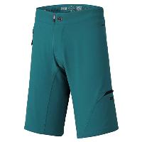 IXS Carve Evo Shorts Everglade M