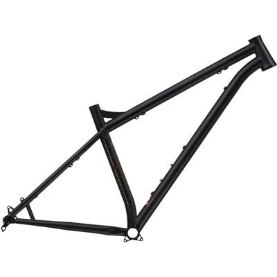 NS Bikes Eccentric Cromo 29 Frame 2021
